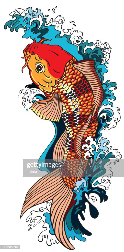 koi carp goldfish swimming upstream
