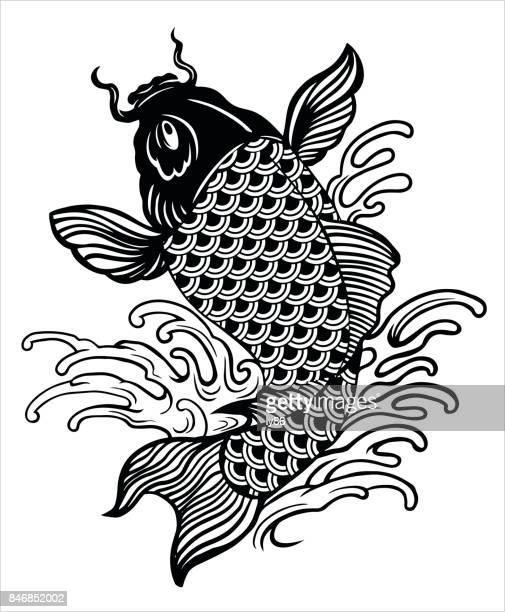 illustrations, cliparts, dessins animés et icônes de carpe koï - carpe