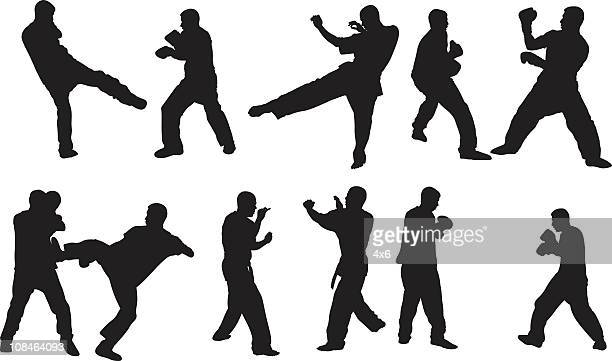 kung fu fighting - fighting stance stock illustrations, clip art, cartoons, & icons
