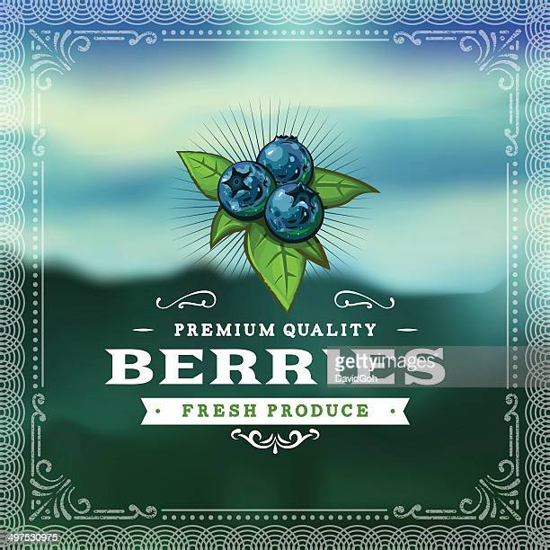 f&b labels - blueberries - blueberry stock illustrations, clip art, cartoons, & icons