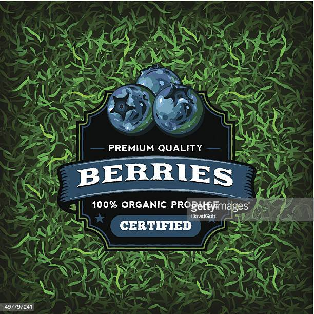 f&b labels - blueberries - organic stock illustrations, clip art, cartoons, & icons