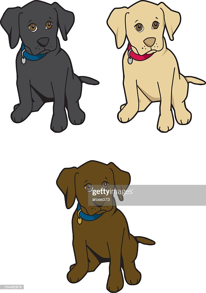 Labrador Puppies High Res Vector Graphic Getty Images