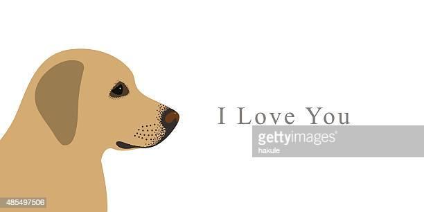 labrador retriever dog standing side, vector - golden retriever stock illustrations, clip art, cartoons, & icons