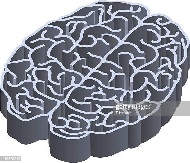 labyrinth brain - fillet stock illustrations, clip art, cartoons, & icons
