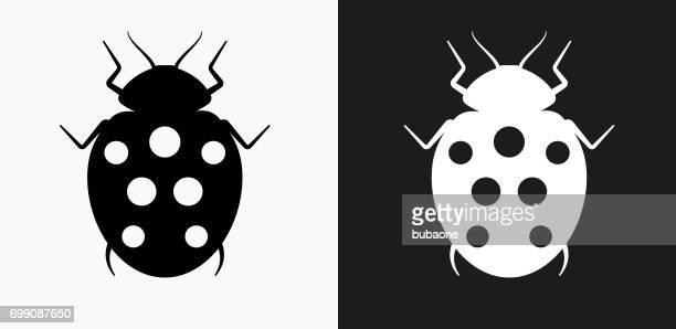 illustrations, cliparts, dessins animés et icônes de lady bug icône sur fond de vector noir et blanc - coccinelle