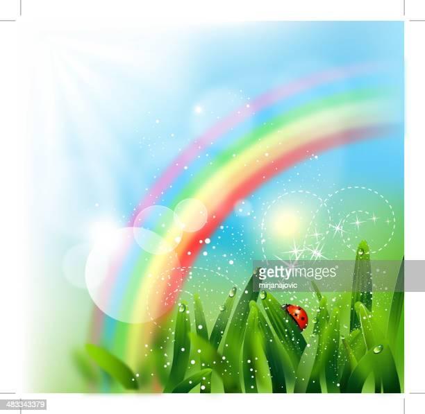 Ladybug and rainbow