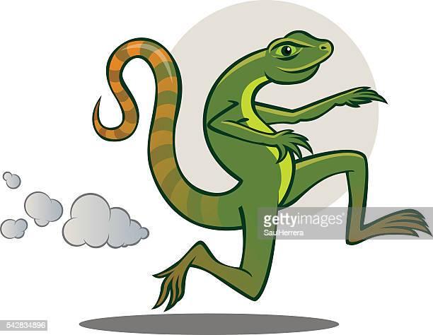ilustraciones, imágenes clip art, dibujos animados e iconos de stock de lagartija corriendo - iguana