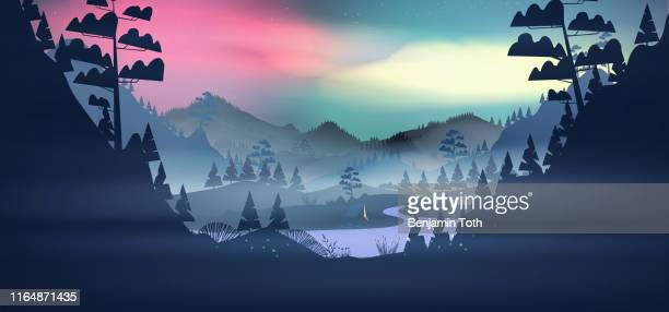 Lakeside forest in the mountains at night with aurora and fog