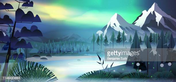 lakeside forest in the mountains at night with aurora - aurora borealis stock illustrations