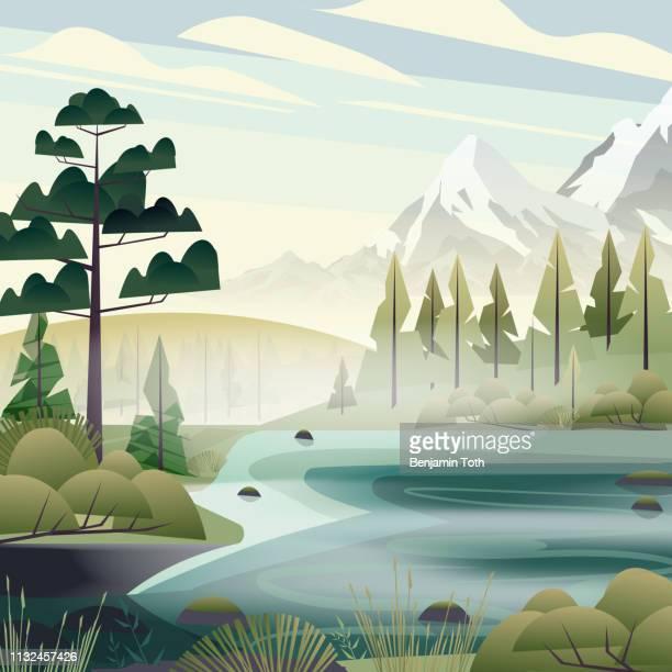 seewald in den bergen - süßwasser stock-grafiken, -clipart, -cartoons und -symbole