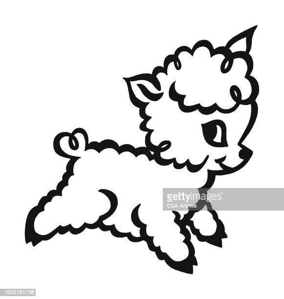 lamb - sheep stock illustrations, clip art, cartoons, & icons