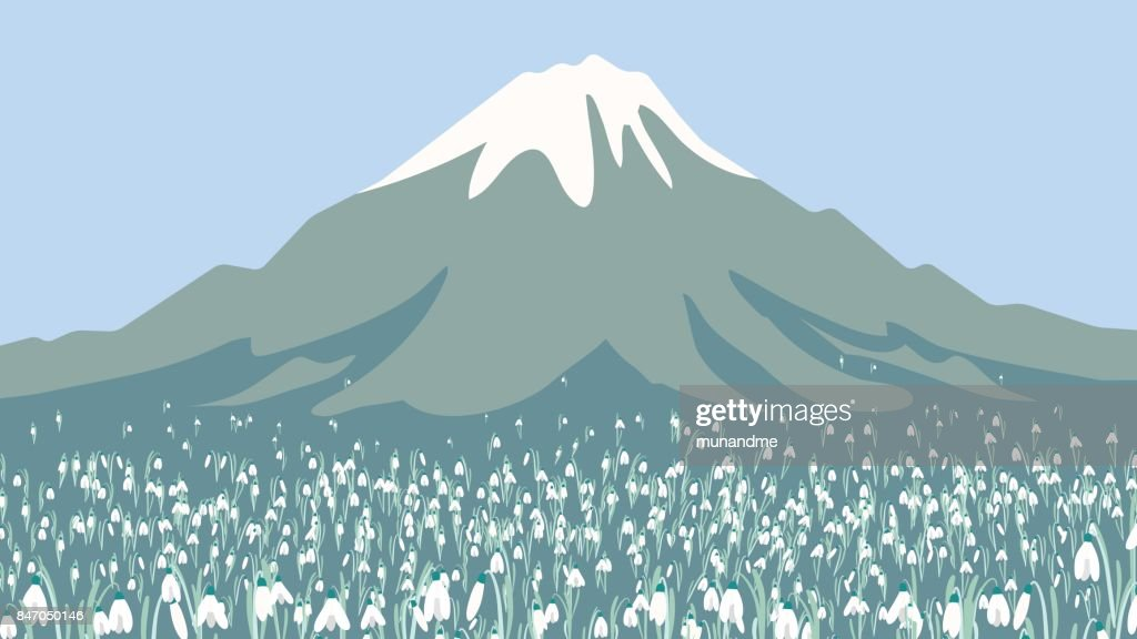 Landscape of high mountain and Galanthus or snowdrop flower field