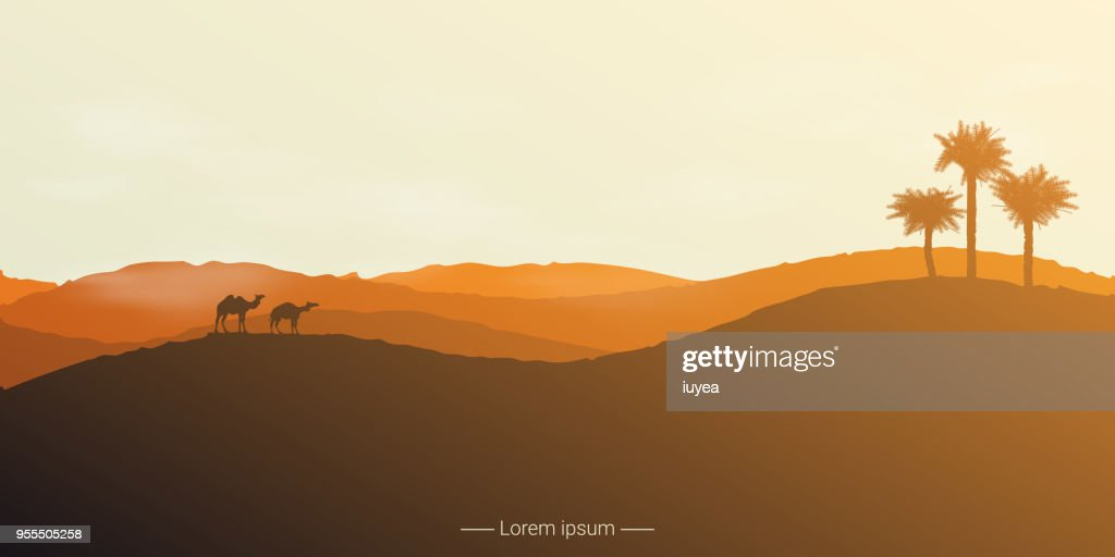 Landscape of the desert with camels and palm trees.