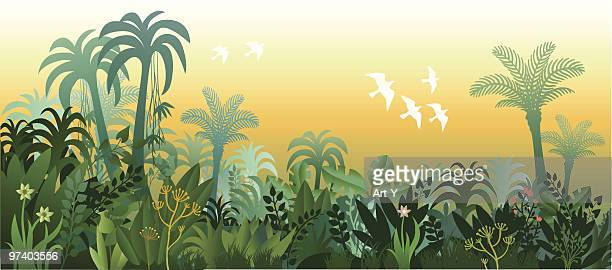 Landscape of Tropical Lush Jungle in Golden Light