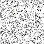 Landscape Topographical Map Line Background. Vector