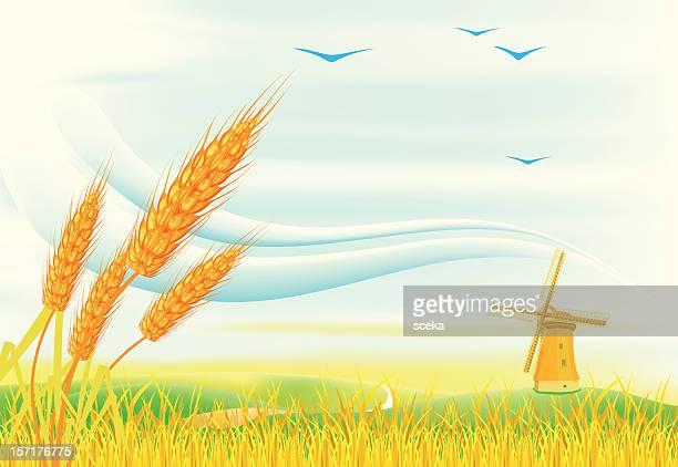 ilustraciones, imágenes clip art, dibujos animados e iconos de stock de paisaje - mazorca de maíz
