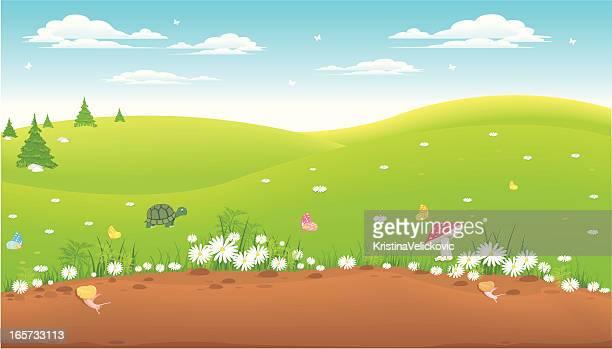 ilustraciones, imágenes clip art, dibujos animados e iconos de stock de paisaje - manzanilla