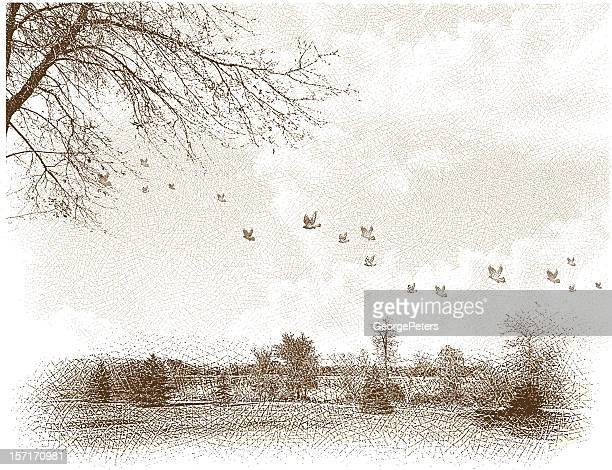 landscape with birds etching - etching stock illustrations