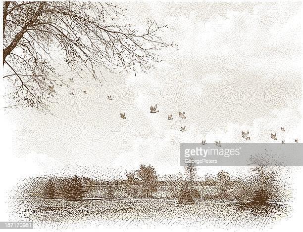 ilustrações, clipart, desenhos animados e ícones de paisagem com esculturas de aves - fora de moda estilo
