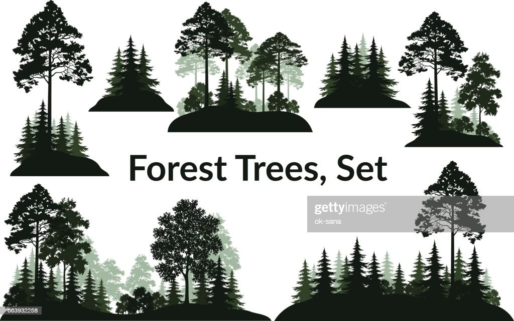 Landscapes, Trees Silhouettes