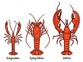 Langoustine, spiny lobster, lobster. Seafood.