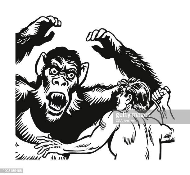 Large Ape and a Man in a Fight