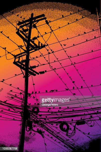 large flock of birds resting on telephone wires - telephone line stock illustrations, clip art, cartoons, & icons