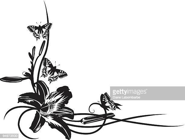 ilustrações, clipart, desenhos animados e ícones de grande lily flor com borboletas preto e branco corner element - lepidóptero