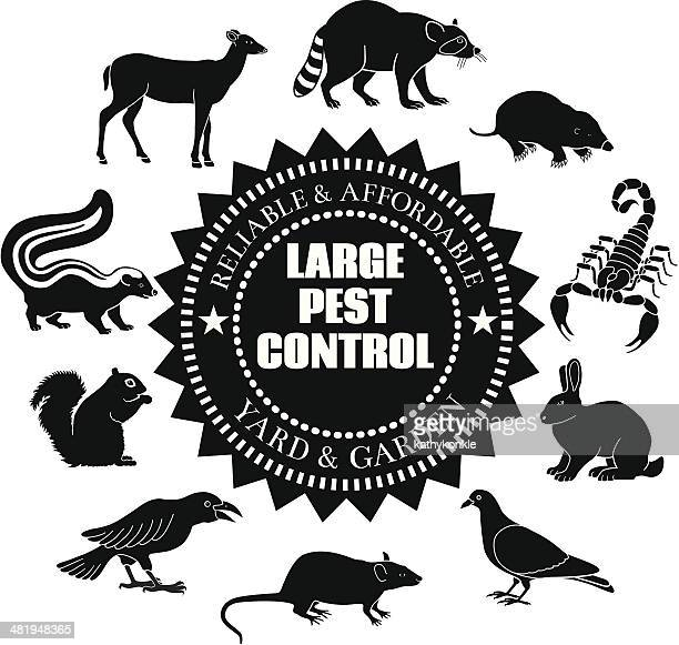 large pest animals - pests stock illustrations