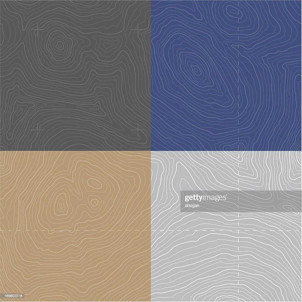 Large Seamless Topographic Map