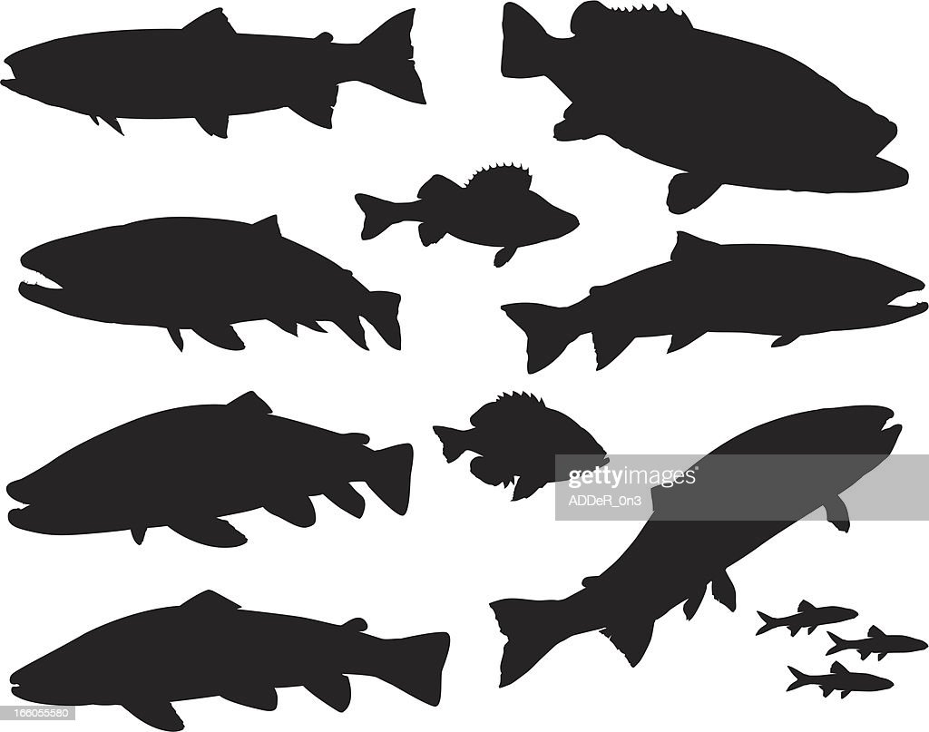 Large Sport Fish Silhouette Set