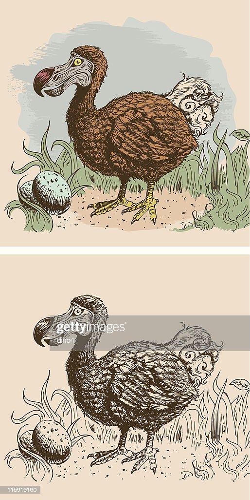 Last Sighting of the Dodo