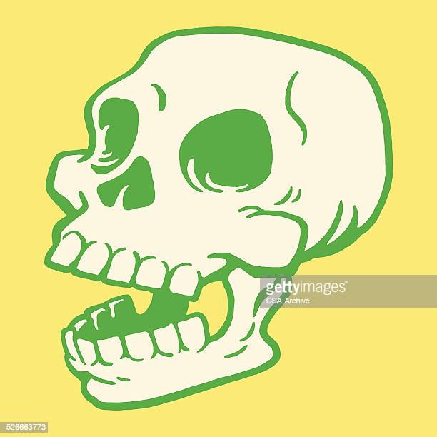 laughing skull - laughing stock illustrations