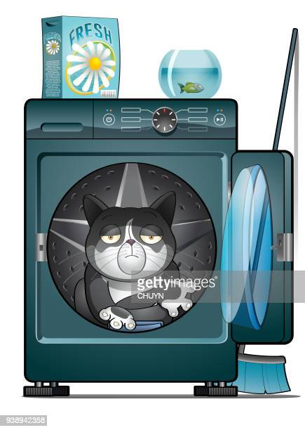 laundry cat - naughty america stock illustrations, clip art, cartoons, & icons