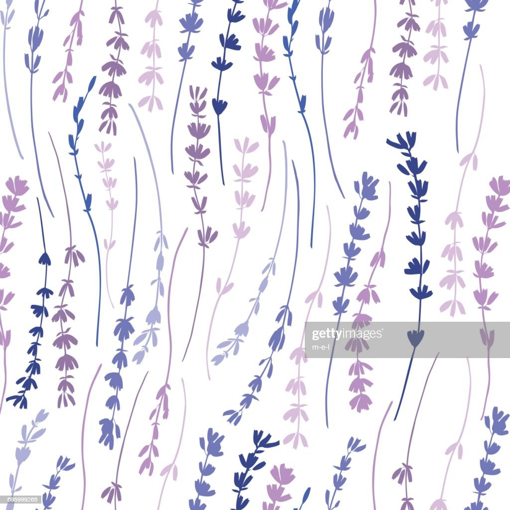 Lavender colorful seamless vector pattern hand drawn graphic flower texture background, sketch isolated on background, for wallpaper, decorative textile, floral fabric, design greeting cards, wedding