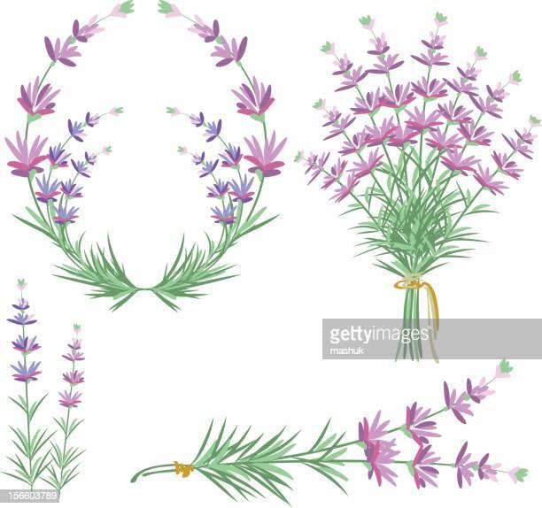 lavender - aromatherapy stock illustrations, clip art, cartoons, & icons