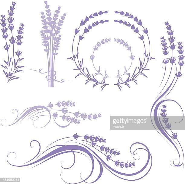 lavender - lavender color stock illustrations