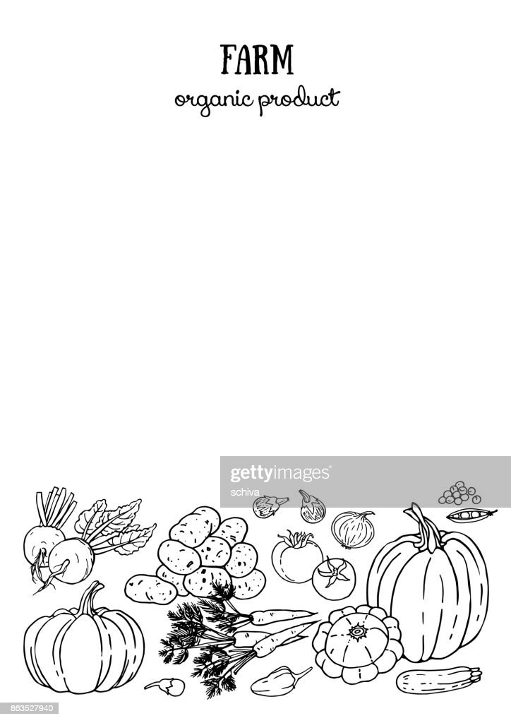 Layout design with farm vegetables. Black and white sketch.