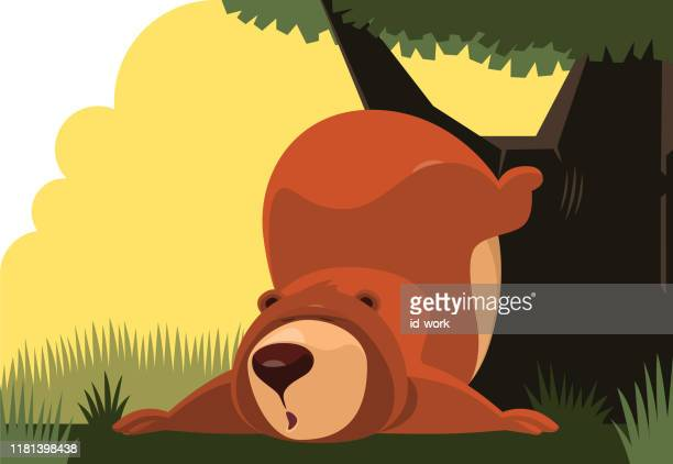 lazy bear leaning on tree - hibernation stock illustrations