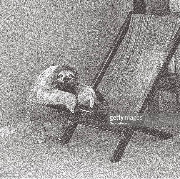 Lazy Three toed sloth relaxing on chair.