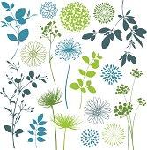 Leaf and Flower Design Elements