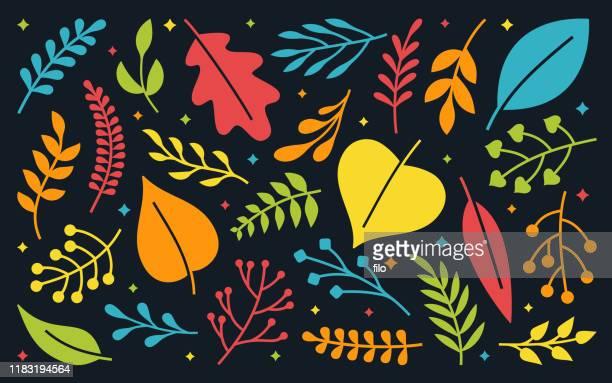 ilustraciones, imágenes clip art, dibujos animados e iconos de stock de elementos de decoración de hojas y plantas - exotismo