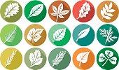 leaf flat icons set