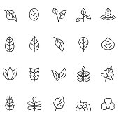 Leaf icon set
