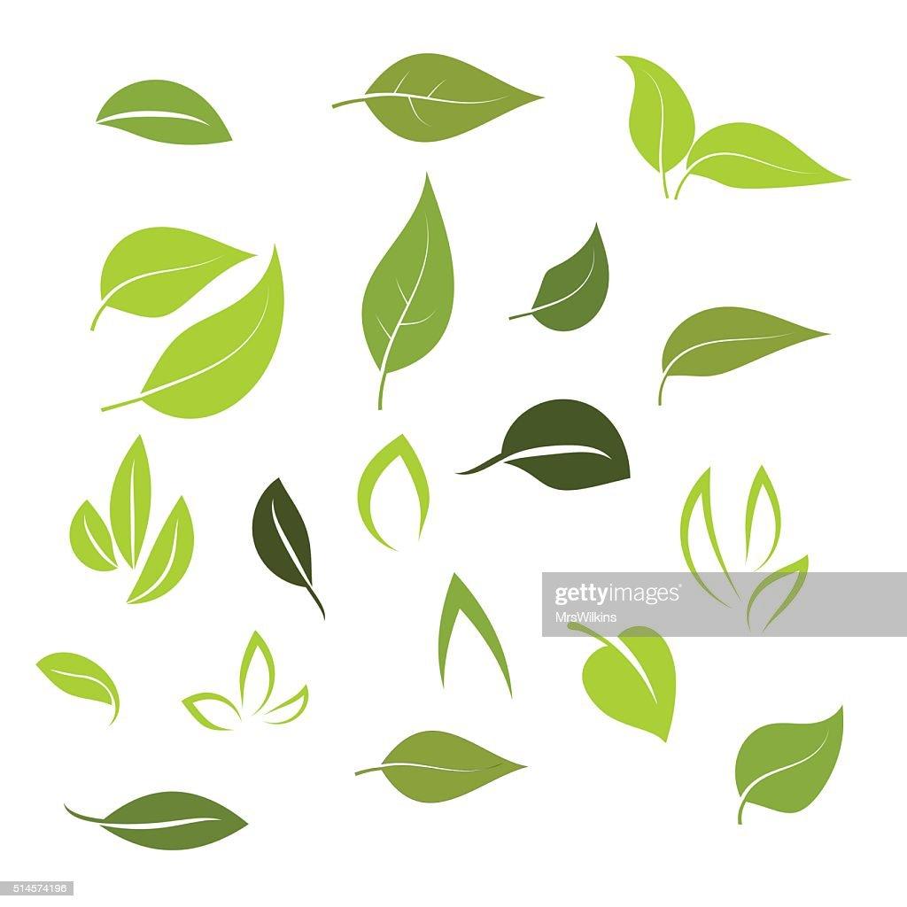 Leaf icon set vector
