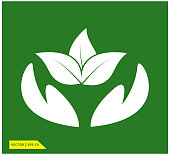 leaf icon vector logo design template