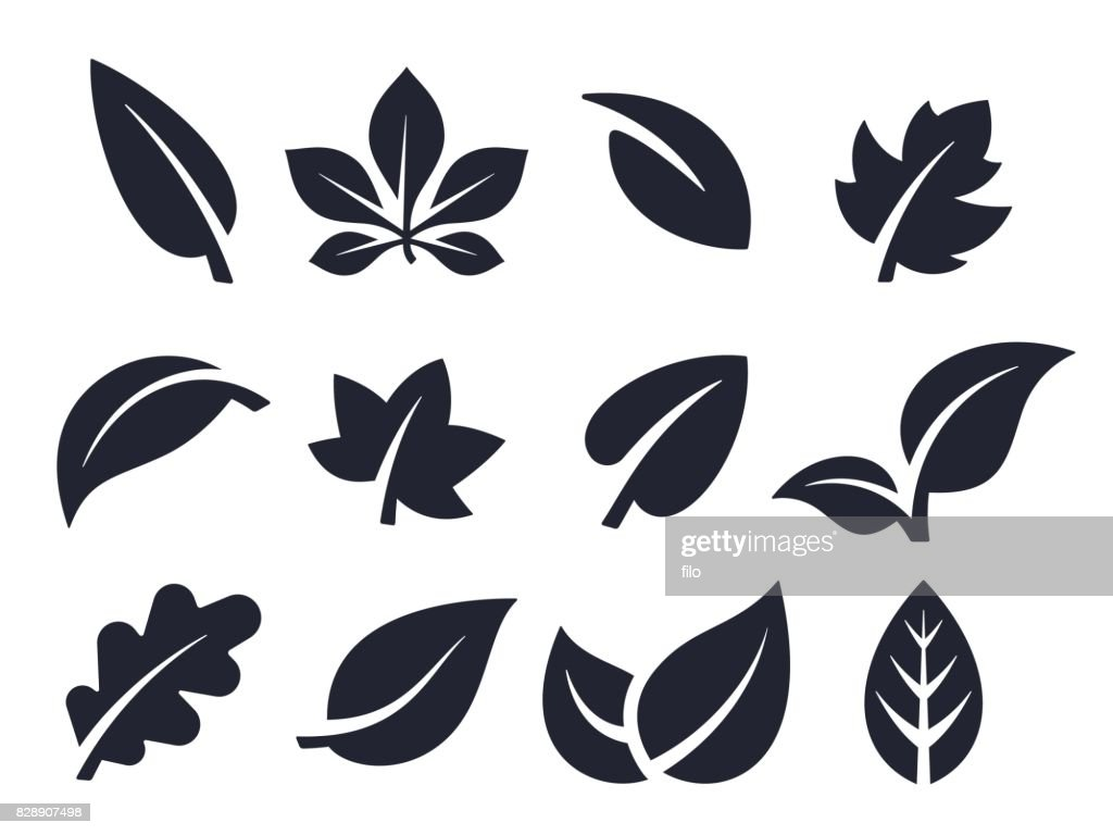 Leaf Icons and Symbols