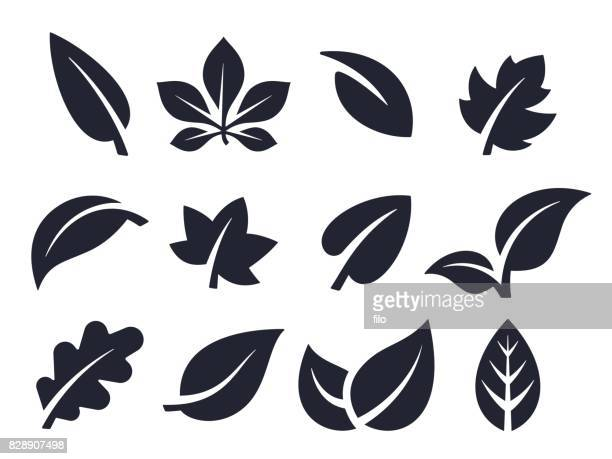 leaf icons and symbols - organic stock illustrations, clip art, cartoons, & icons
