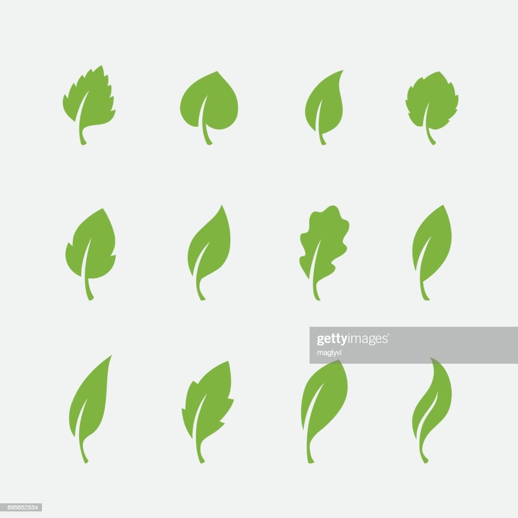 Leaf icons set on white background