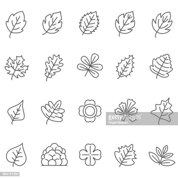 leaf icons set - deciduous tree stock illustrations, clip art, cartoons, & icons